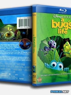 Câu Chuyện Côn Trùng A Bug's Life