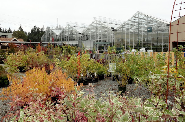 And So That S My Visit To Sky Nursery I Definitely Recommend Stopping In When You Re The Area