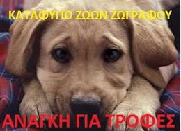 Αν θέλεις να βοηθήσεις εθελοντικά ή να υιοθετήσεις ένα σκυλάκι,κλικ στην εικόνα