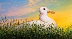 ¿Conejo o pato?