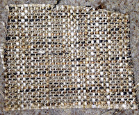 Compnay C Nori Slate Fabric