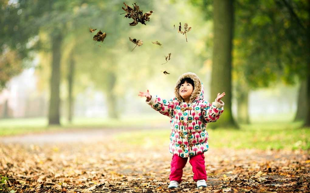 Child Enjoying with Tree Leaf