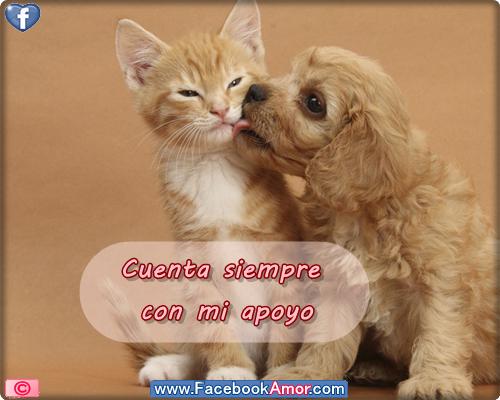 Imagenes Lindas De Amistad Para Facebook - Imagenes de Amistad Lindas Hermosas Fotos de Amor Y