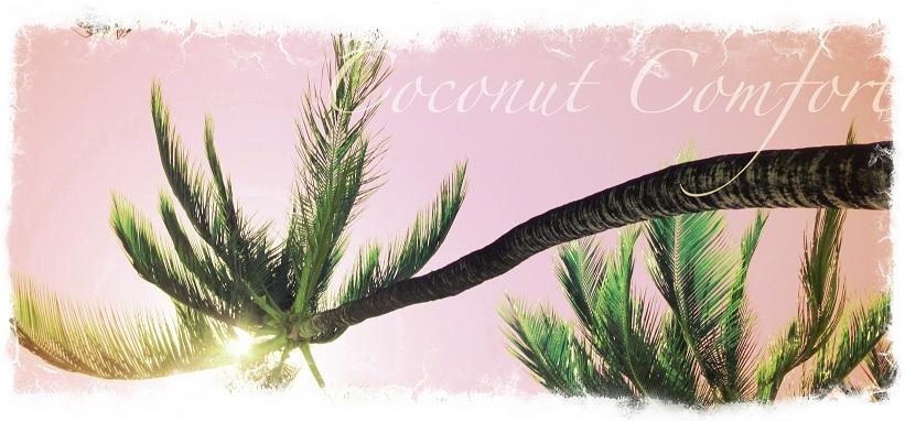 Coconut Comfort