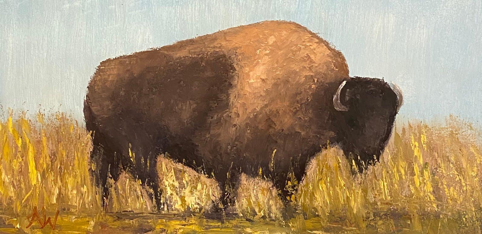 """""""Buffalo grazer"""""""