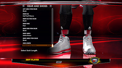 NBA 2K13 Derrick Rose Accessories