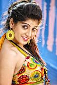 Priyadarshini hot photos-thumbnail-12