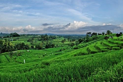 tujuan wisata lombok, tempat wisata alam, wisata alam tetabatu, kaki gunung rinjani