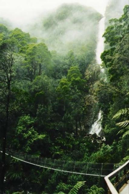 Tasmânia Montezuma Falls