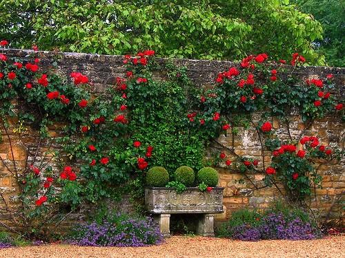Unusual Stone Walls : Inspire bohemia unique garden planters and displays