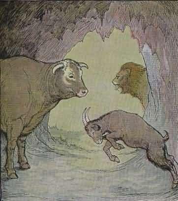 Shio kambing dan kerbau