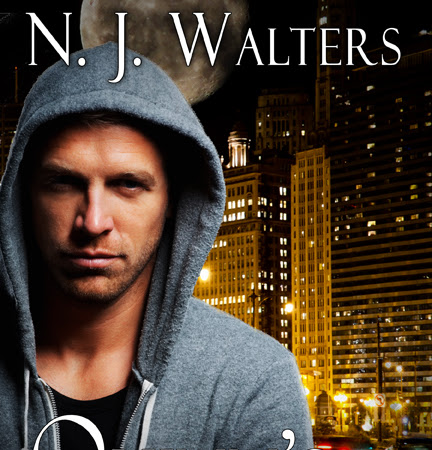 Quinn's Quest by N.J. Walters