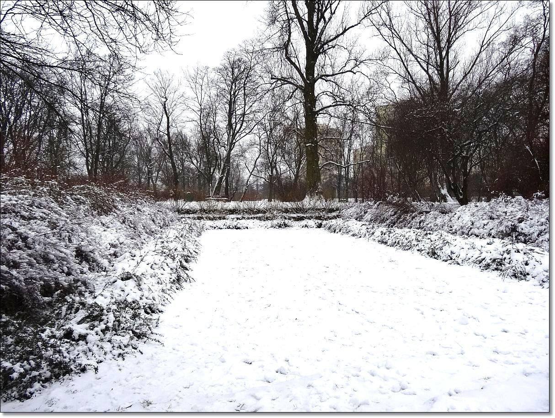 Park Leśnika