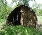 Sacred Mijikenda Kaya Forests Kenya