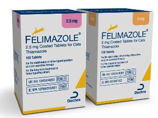 Methimazole For Cats Generic Names