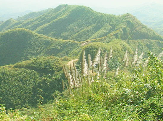 chtdf promoting livelihoods in chittagong hilly Development aid essays and research papers | examplesessaytodaybiz studymode - premium and free essays, term papers & book notes.