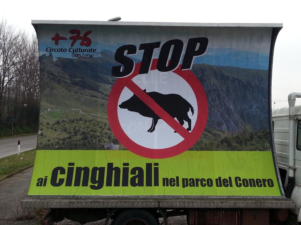 Stop ai cinghiali nel Parco del Conero