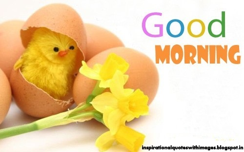 good morning love