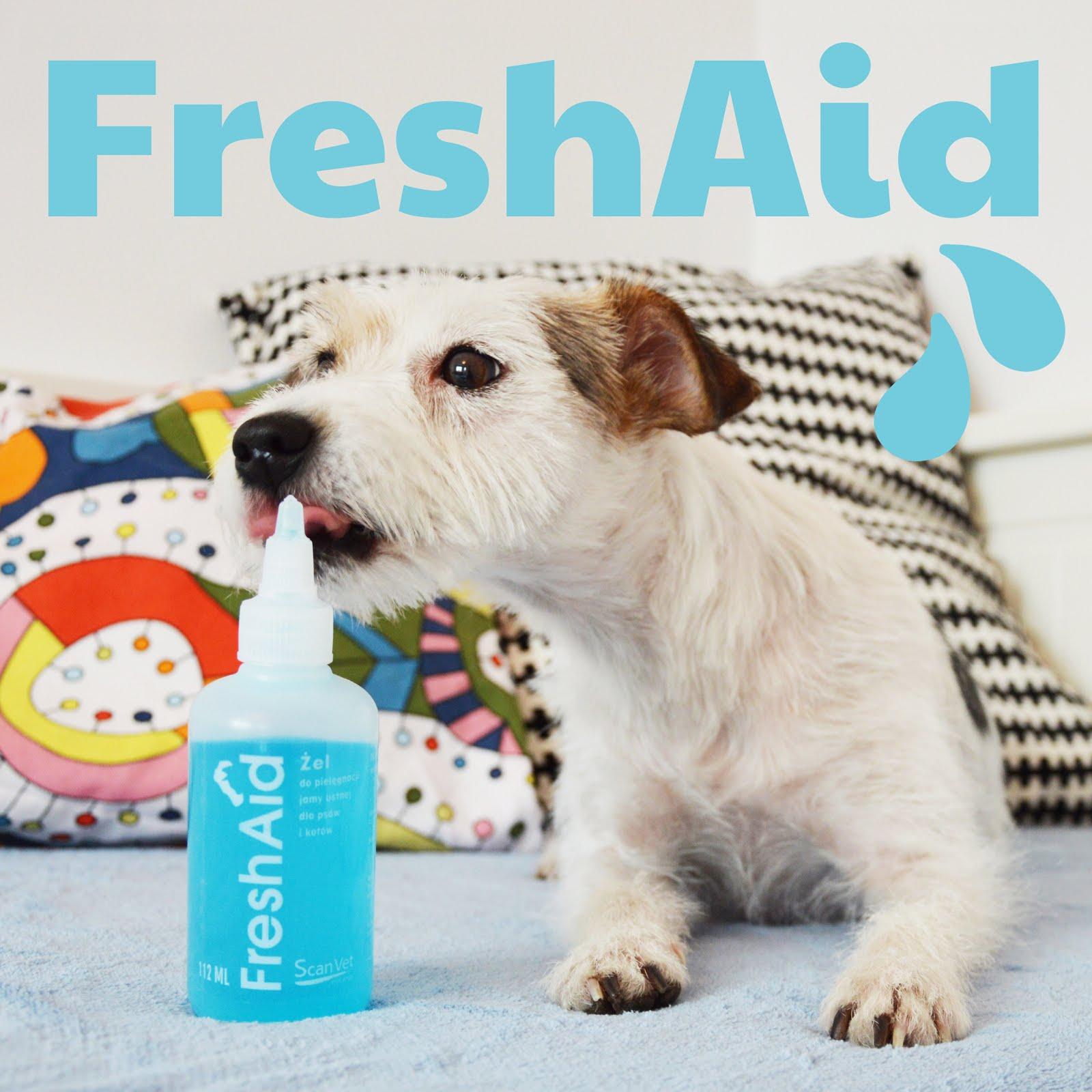 FreshAid