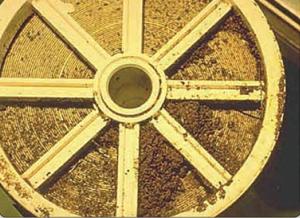 membran reverse osmosis