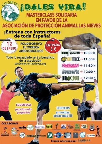 Evento solidario ¡Dales vida! de la Asociación de Protección Animal Las Nieves