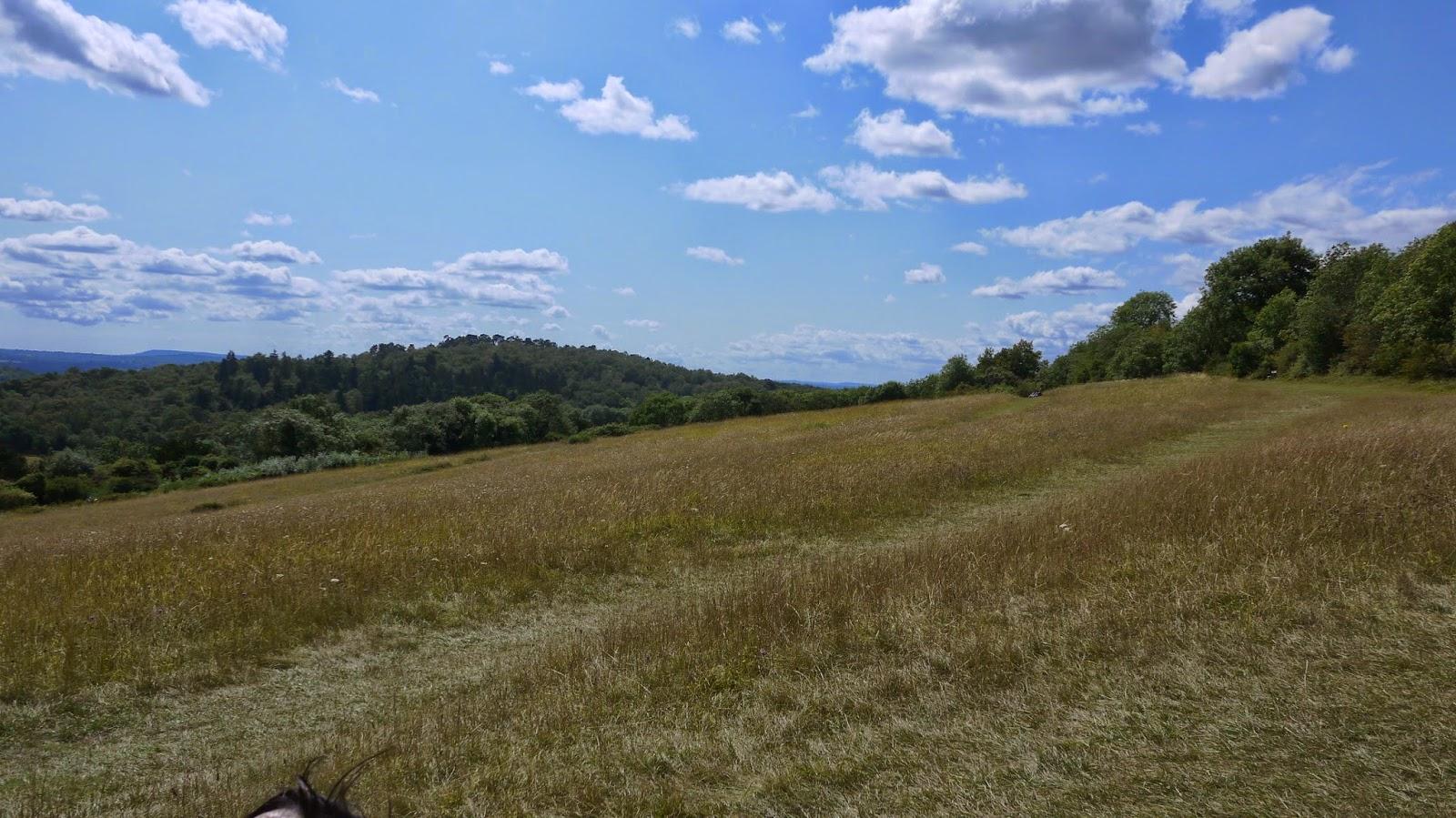 Newlands Corner Surrey