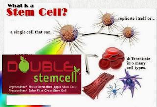 double stemcell testimoni