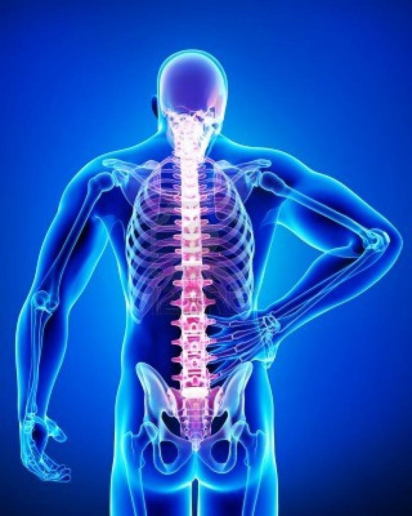 Ginnastica a ernia di una spina dorsale cervicale e lombare