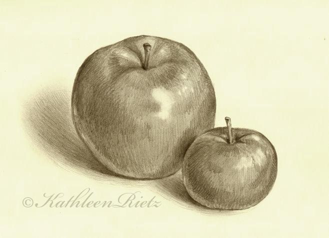 Apples01%2872%29.jpg (658×475)