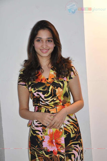 Tamil Actress Tamanna Sexy  Photo