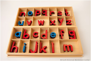 NAMC montessori movable alphabet introducing to preschool student