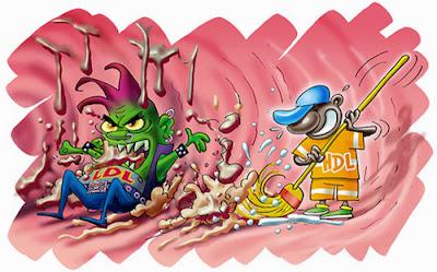 Koleserol HDL dan LDL (Kadar kolesterol di bawah 200 mg/dL, dengan kadar LDL di bawah angka 130 dan HDL berada di atas angka 40)