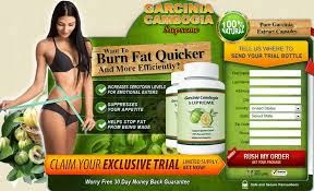 Garcinia Cambogia extract and weight loss