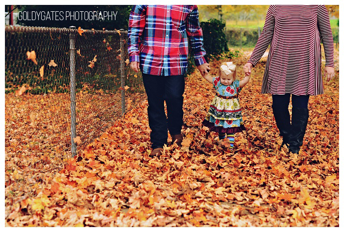 chattanooga family photographer