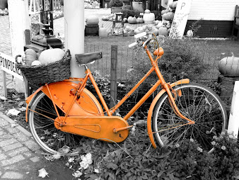 #25 Bikes Wallpaper