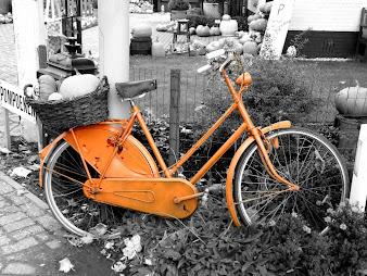 #28 Bikes Wallpaper