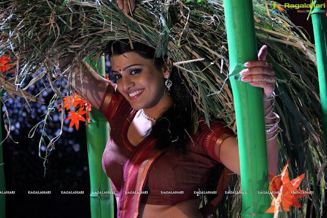 Tashu Kaushik in saree