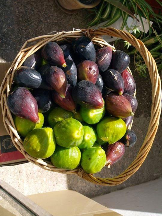i said figs