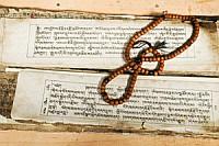 Rig-Vedic-cultural-context