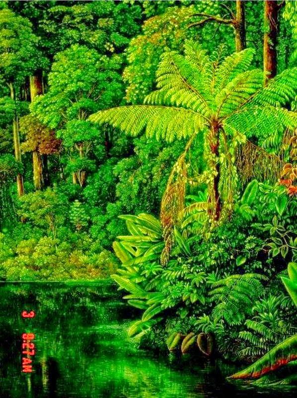 pinturas-de-selvas-naturales-de-centroamerica