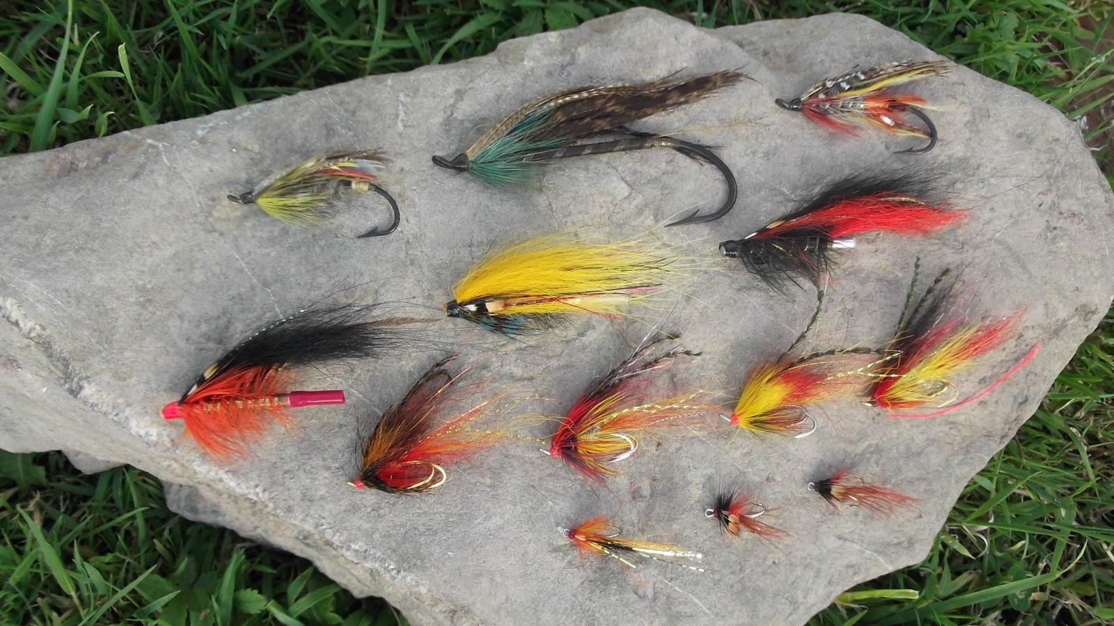 клев рыбы на 5 дней
