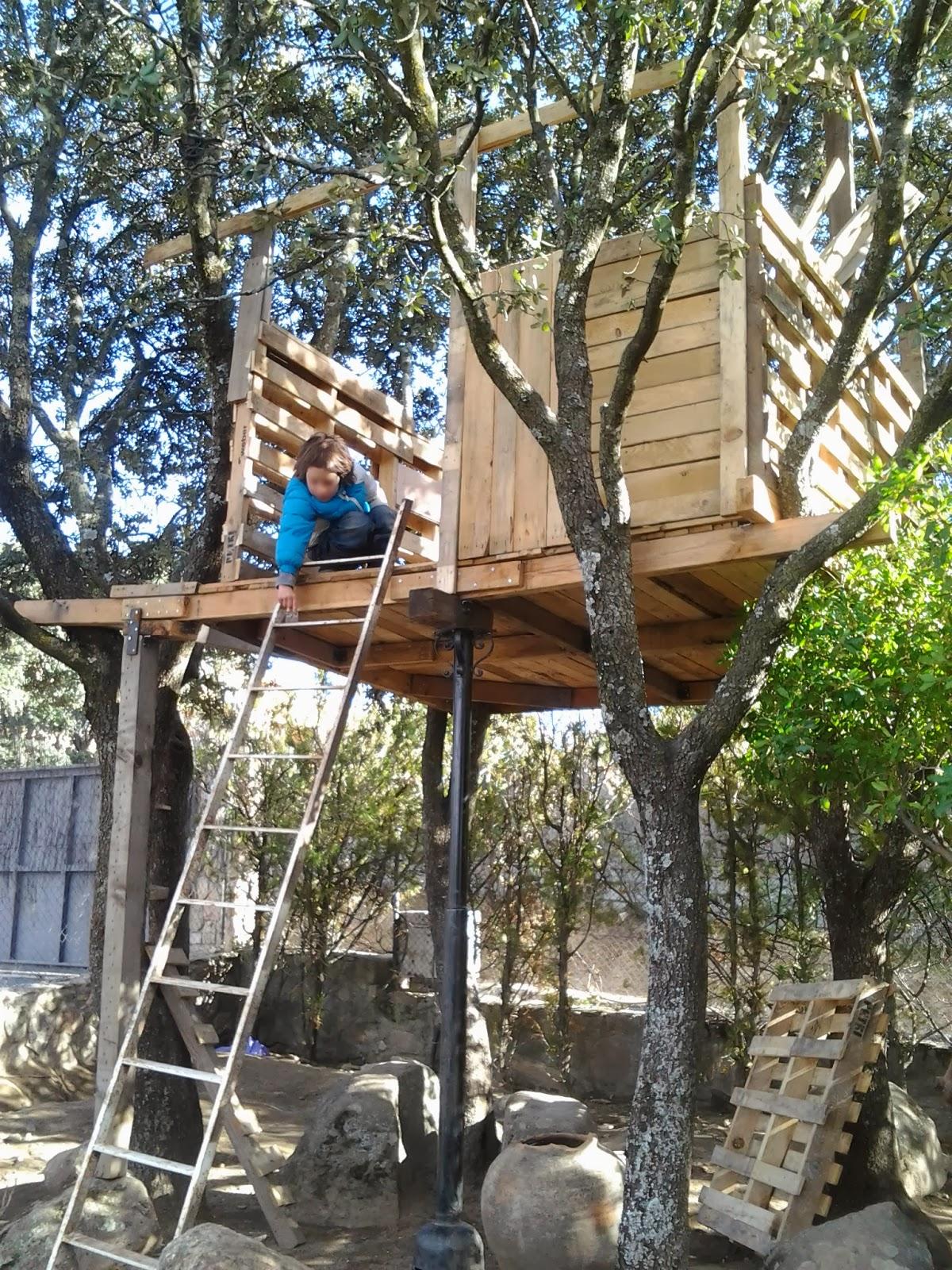 Supermanitas como construir caba a sobre varios rboles - Casas en el arbol ...