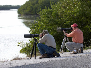 Tips For Birding Using A Spotting Scope