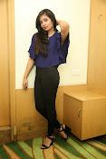 Bhanu sri mehra sizzling photos-thumbnail-1