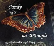 motyl - candy