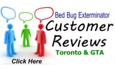 Toronto Exterminator Reviews