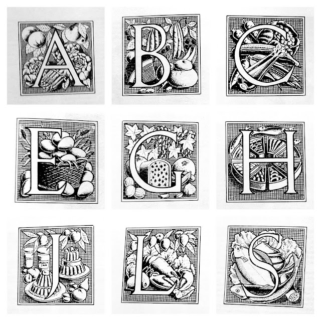 box elder alphabets