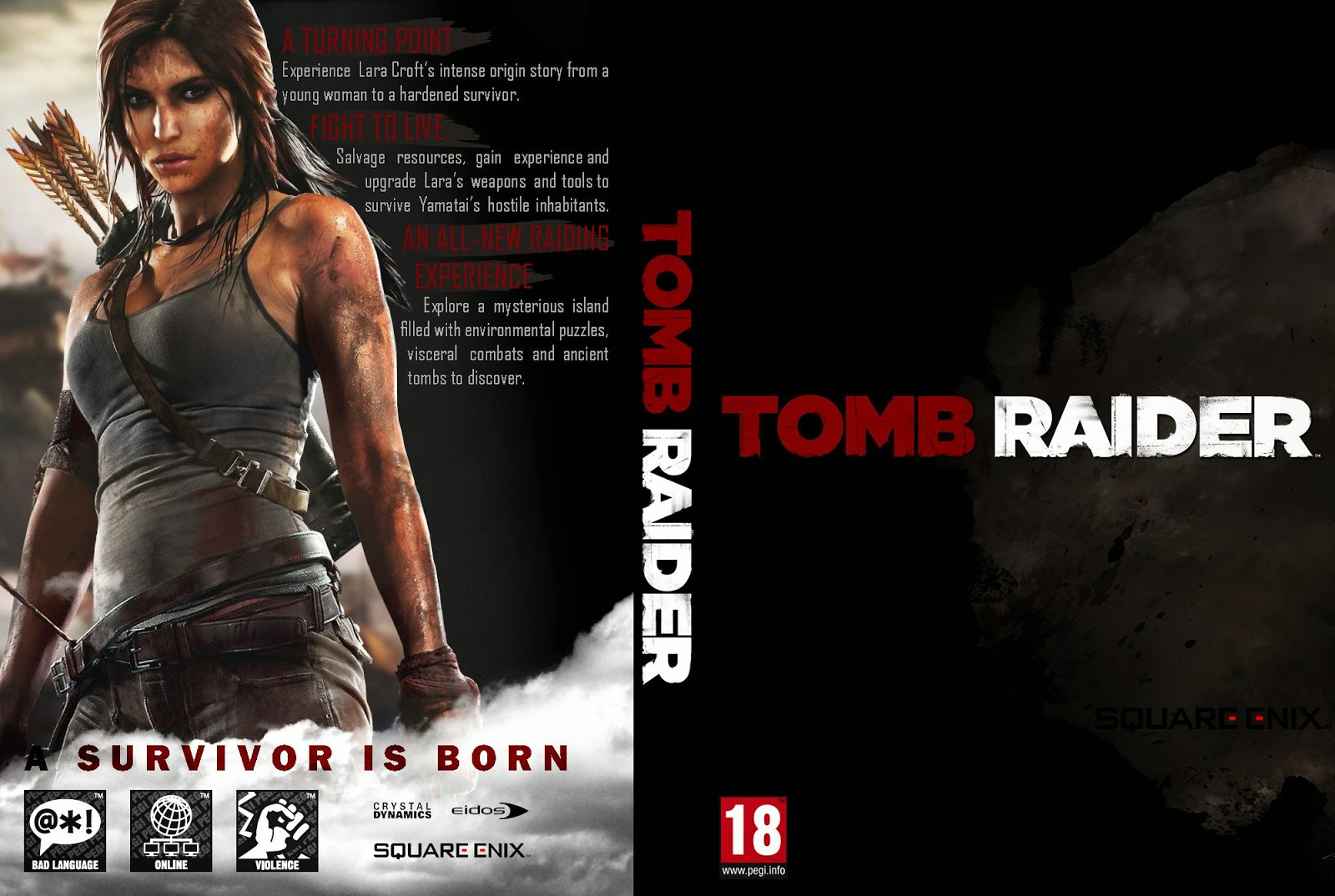 Capa Tomb Raider PC
