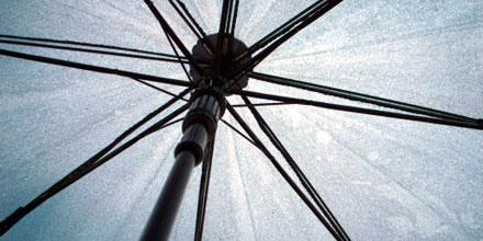 ディズニーランド雨の日