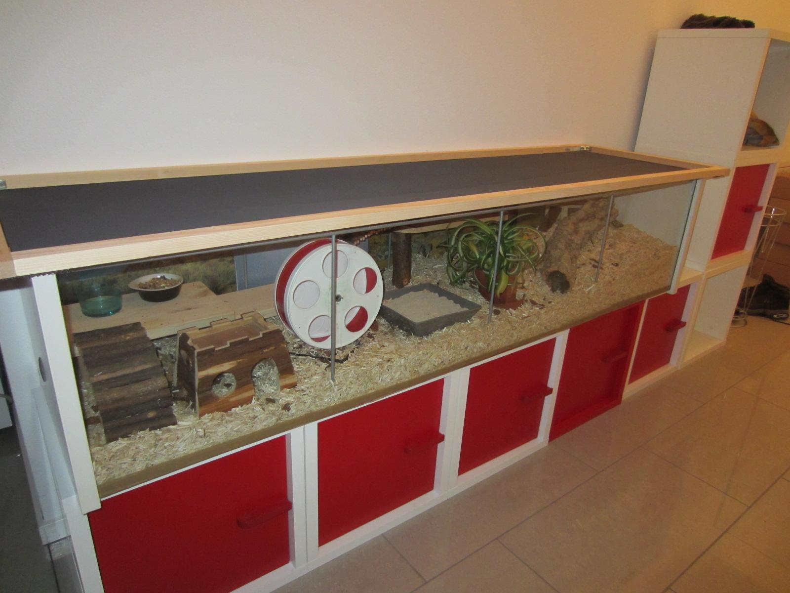 Natura animali approfondimento gabbia per criceti nani for Ventose ikea